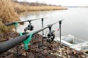 Pescuitul crapului în agăţătură