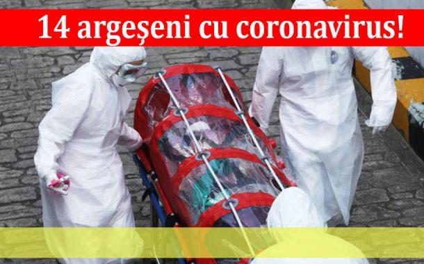 14 argeşeni cu coronavirus!