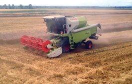 Vom avea mai puțin grâu anul acesta