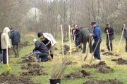 S-au împădurit 72 de ha de pădure!