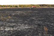 Arderea miriştilor, interzisă la Mioveni