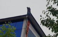 Ameninţă că se sinucide într-un centru de carantină, din Pitești!