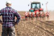 Fermierii pot depune cererile unice până pe 15 iunie