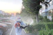 Stropiri împotriva insectelor în Pitești!