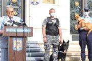 Se înființează Poliția Animalelor