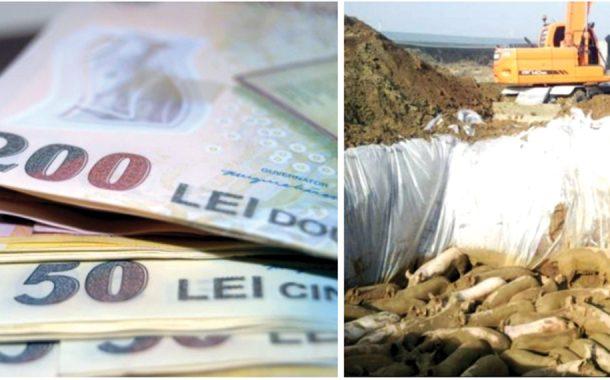 15  mil euro plătiţi fermelor afectate de pestă