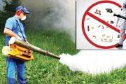 Începe o nouă campanie de dezinsecţie şi dezinfecţie la Mioveni