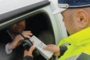 Argeșenii au format o rețea de furturi în Germania