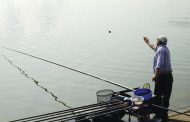 Pescuitul la babuşcă şi plătică