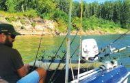 Pescuitul din barcă la feeder şi pescuitul carasului pe Dunăre