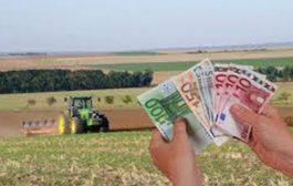 Fermierii români primesc aproape 1 miliard de euro