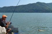 Pescuitul la plătică pe Dunăre