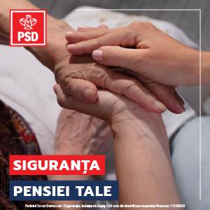 pensie 300x300-01.png