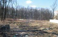 Terenurile din zonele pădurii, verificate!