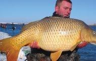 Pescuitul crapului pe apă rece (I)