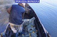 Pedepsele pentru braconaj, pescuit fără permis şi alte infracţiuni