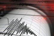 Patru cutremure în Argeş