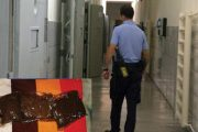 Gardian condamnat pentru droguri!