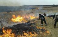 Amenzi de 2.500 lei pentru incendierea vegetaţiei