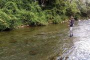 Pescuitul cleanului la muscă