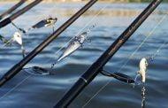 Pescuitul sportiv la avat