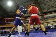 Boxul, inclus în programul Jocurile Europene