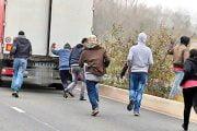 Migranţi fugăriţi la Zamfireşti!