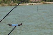 Pescuitul sportiv la mreană