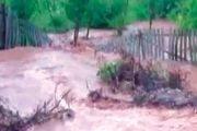 Drum distrus de o ploaie torenţială!