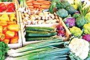 Importurile de alimente au ajuns la cote îngrjorătoare