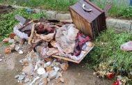 Sicriu folosit, abandonat pe o alee din cimitir!