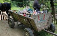 Amendat cu 1000 de lei pentru gunoiul aruncat în pădure