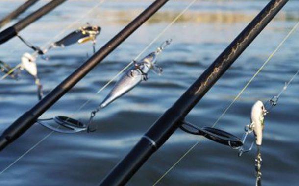 Pescuitul avatului pe Dunăre