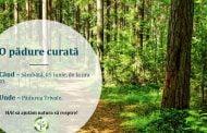 Acțiune de ecologizare a Pădurii Trivale!