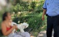 Proprietari de câini amendaţi că nu au curăţat mizeria animalelor!