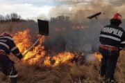 Arderile de vegetație pot aduce amenzi de 2500 lei