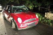 Beat, s-a răsturnat cu maşina şi a fugit!