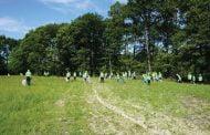Campanie de ecologizare cu voluntari, la Mioveni